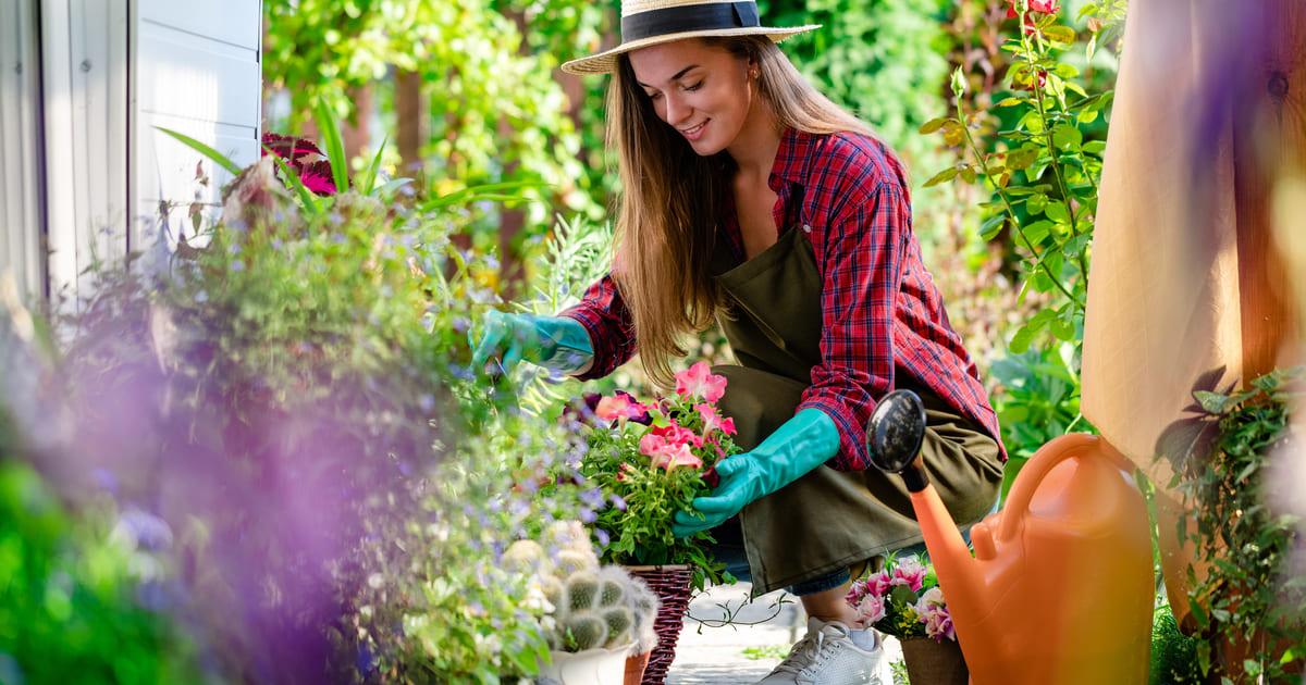 Conheça o melhor kit para jardinagem